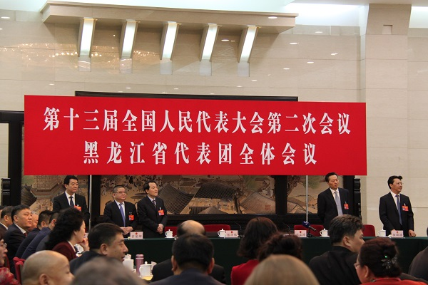 十三届全国人大二次会议黑龙江代表团举行全体会议
