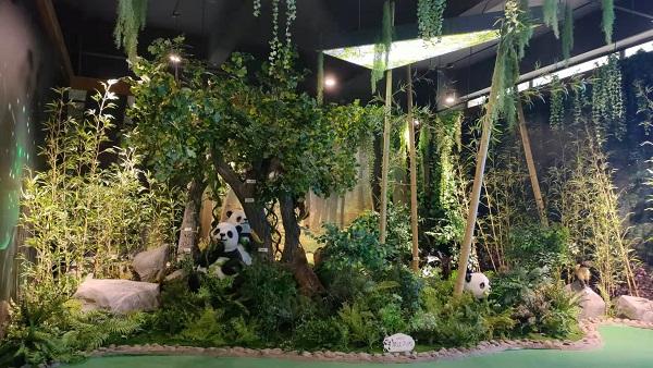大熊猫国家公园(绵竹园区)科普中心亮相
